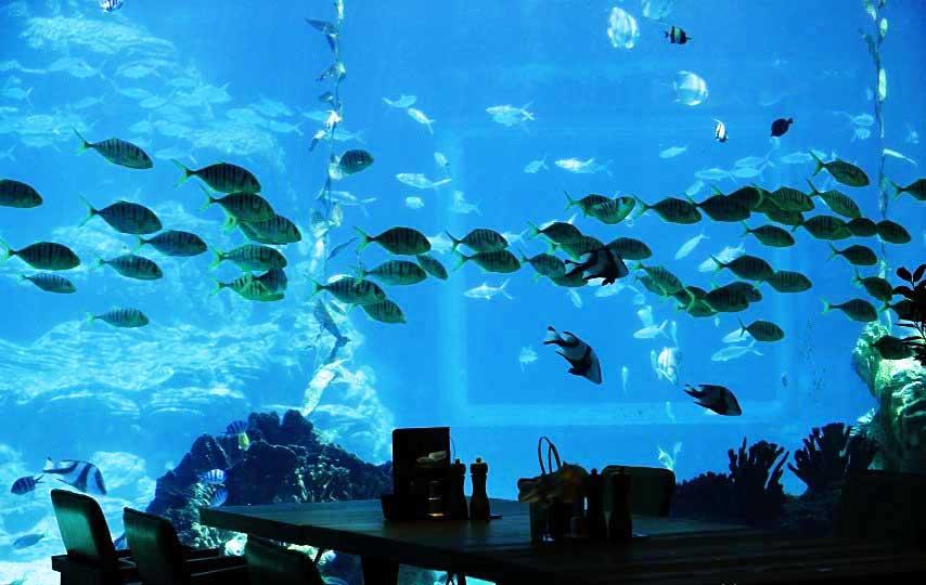 三亚海棠湾洲际酒店由dda骆丹国际酒店设计(香港)有